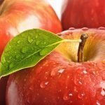 Role of Edible Films and Coatings in Food Industry-II