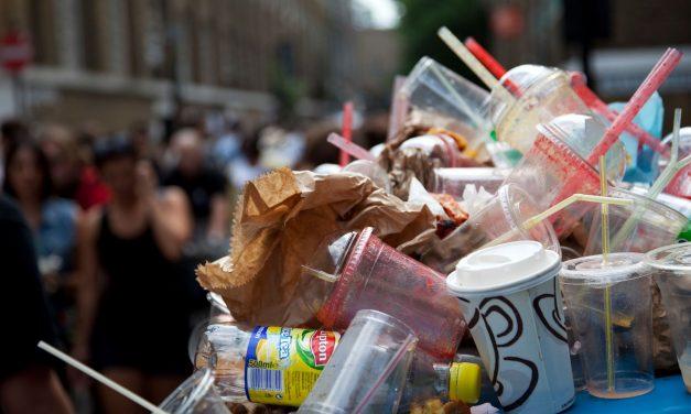 Impact of Ban on Single use Plastic on Food Industry