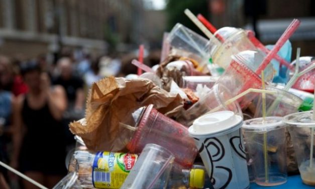 Impact of Ban on Single use Plastic on Food Processing Industry