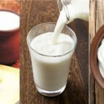 Fermented Milk Products — Nature's Blessings