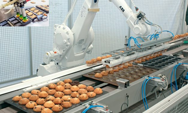 Robots for Productivity Improvement in Agri-Food Industry
