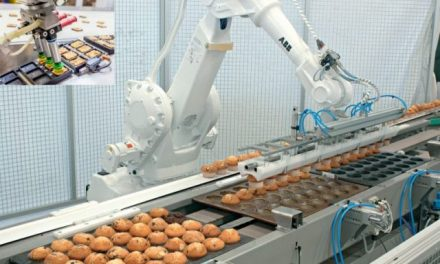 How Robots can Improve Productivity in Food Industry