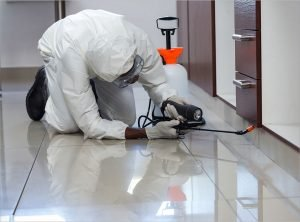 Pest Control for food processing and storage of food