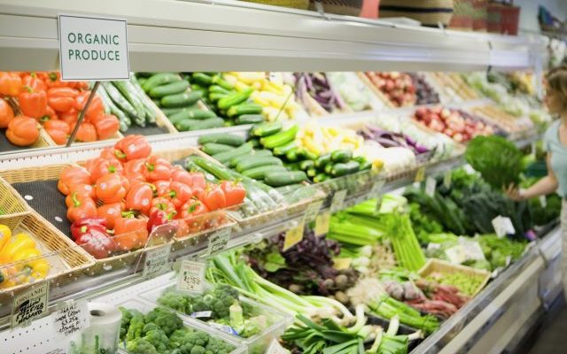 PGS will Revolutionise Organic Food Production in India