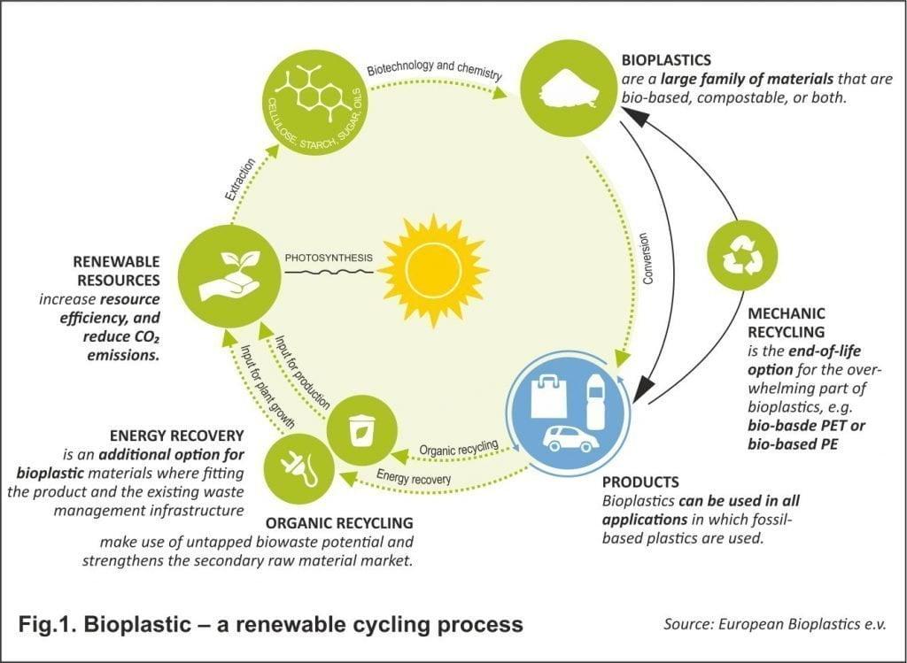 Bioplastic – a renewable cycling process
