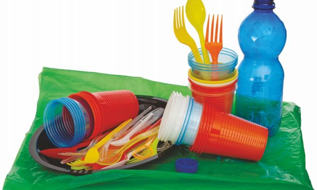 Single use Plastic: Banning Easy, But Alternatives Difficult