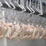 Meat and Poultry Processing Industry in India