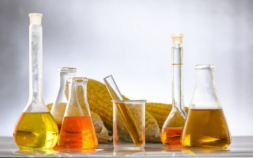 Application of Pullulanase Enzyme in Food industry
