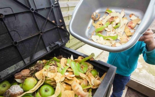 Curbing Food Wastage: Packaging Contributes in a Positive Way