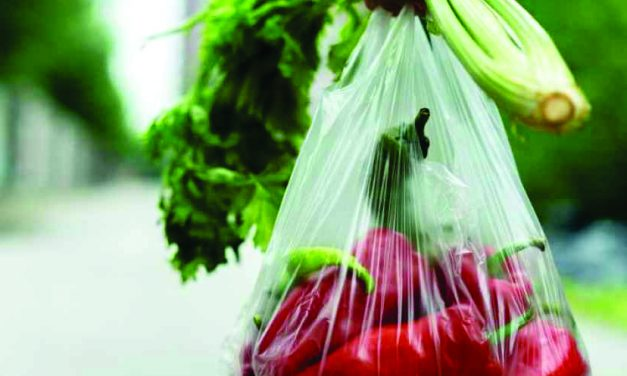Plastic Banningan Approach Towards the Solvation for Post Consumer Plastic Food Packaging and Waste Management Model