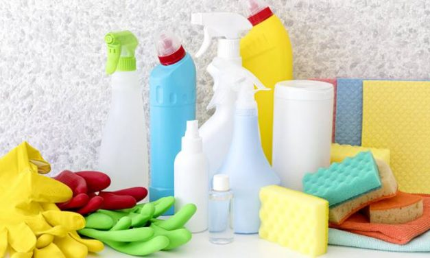 Hygiene takes top priority in food processing industry