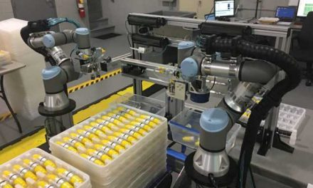 How Robots can make a Difference to Food Processing Industry