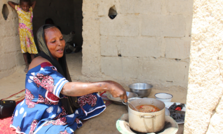 Fuel-efficient stoves are keeping women safer in Nigeria| FAO