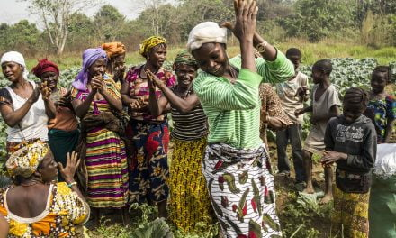 Securing land tenure rights for farmers in Sierra Leone| FAO