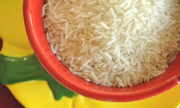 India applies for exclusive GI tag to Basmati rice