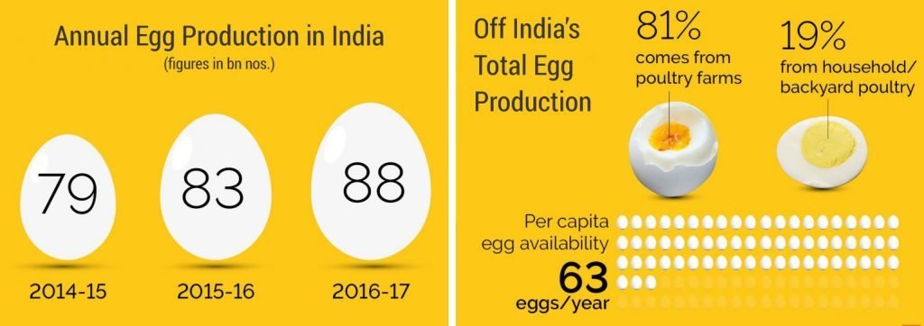 Annual Egg Production in India