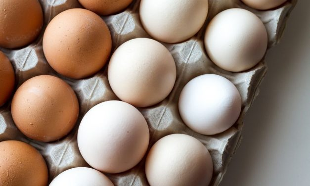 Eggs becoming an important part of daily diet