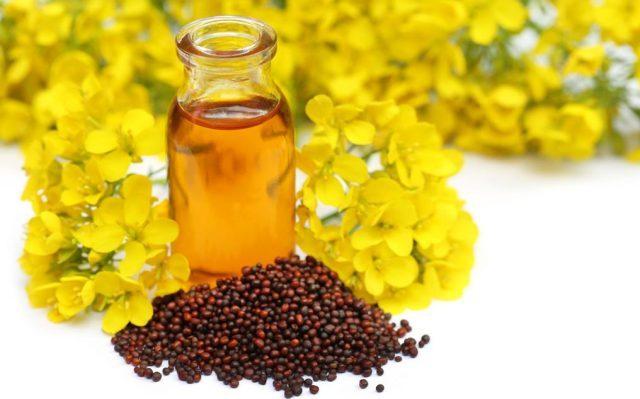 Mustard Oil: FSSAI withdraws Order on Prohibiting Blending