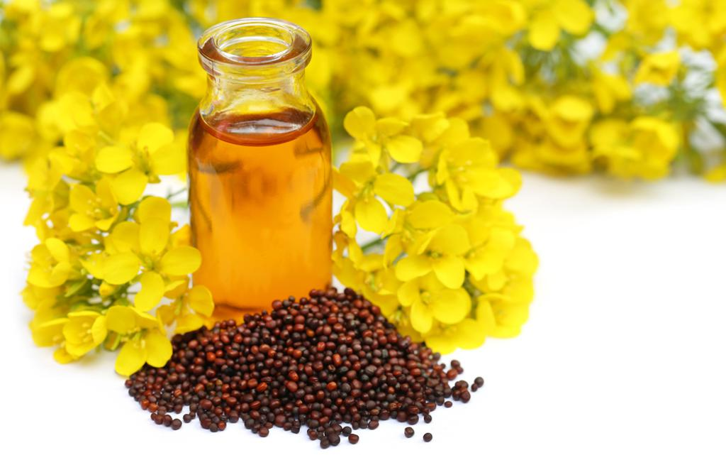 Mustard oil: FSSAI withdraws order on prohibiting blending
