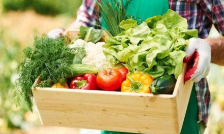Organic food products export up by 50% despite COVID-19 challenges