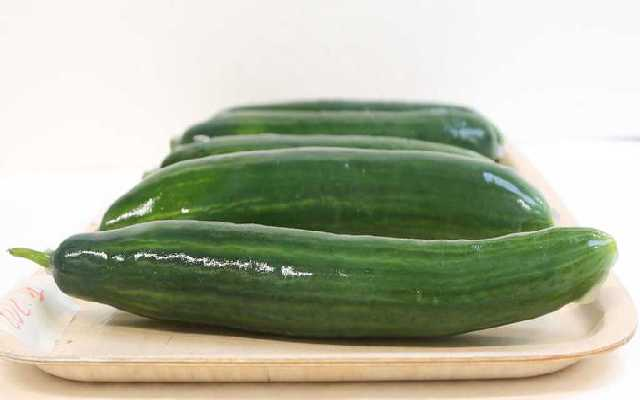 Students Create Novel Biobased Packaging for Cucumbers – Called DipWrap