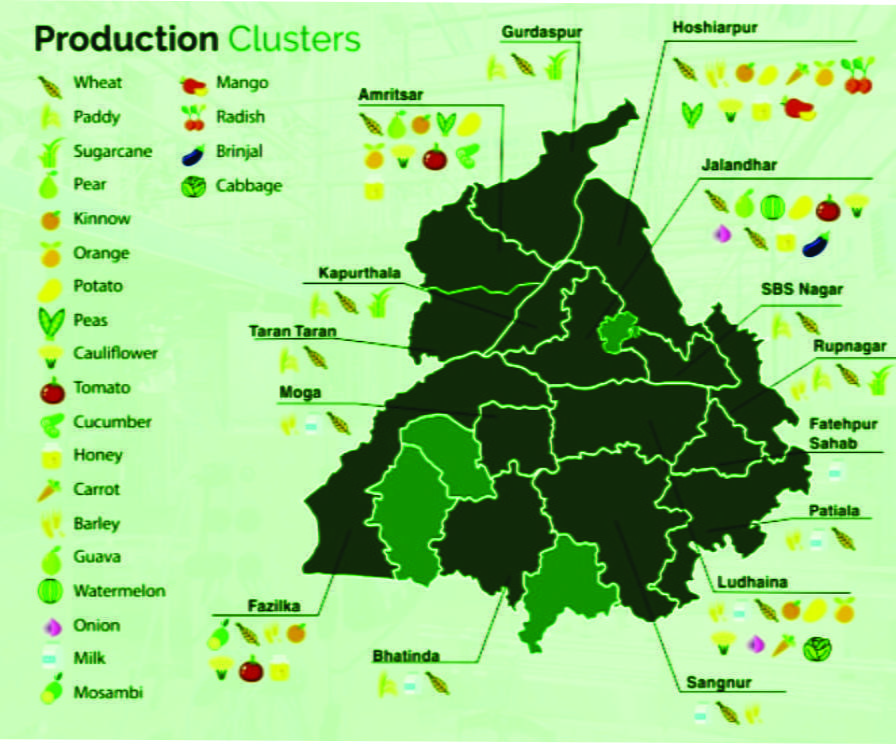 Punjab raw material production custer for food processing