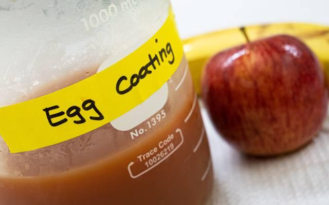 Egg-based-coating-2