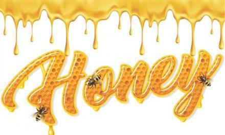 Honey — A Miracle Food